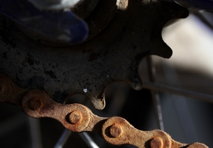 Rusted Drive Cog and Chain